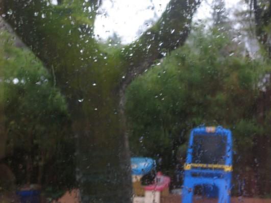 rainytoys
